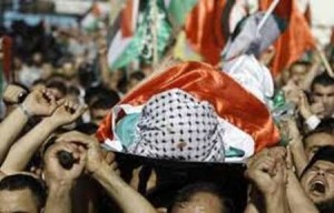syahid palestina