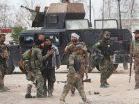 Relawan Irak Akan Ikut Berlaga di Suriah Melawan Teroris