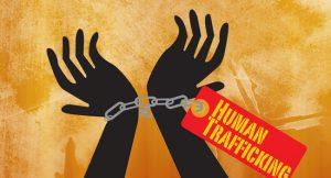 human-traff