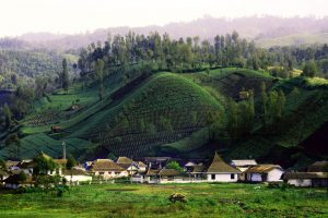Cantiknya Desa Ranu Pani di Kaki Gunung Semeru