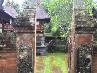 Jalan-Jalan di Tabanan, Melihat Rumah Tradisional Khas Bali