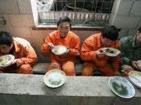 Ribuan Pekerja Cina Akan Dikirim ke Israel