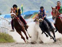 Meriahnya Pacuan Kuda Tradisional di Tanah Gayo