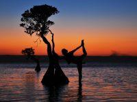 Berfoto dengan Pohon-Pohon Magis di Pantai Walakiri