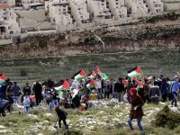 Palestinian protesters carry national flags and plant olive trees facing the Israeli settlement of Beitar Illit during a protest marking Land Day, in the village of Wadi Fukin, near the West Bank city of Bethlehem, Monday, March 30, 2015. Land Day commemorates riots on March 30, 1976, when six people were killed during a protest by Israeli Arabs whose property was annexed in northern Israel to expand Jewish communities. (AP Photo/Mahmoud Illean)