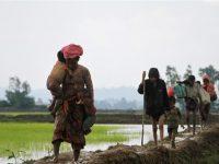 PBB: Kamp Pengungsi Rohingya di Bangladesh Sudah Penuh