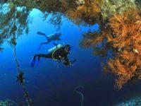Mari Berenang Bareng Nemo di Pulau Kapoposang!