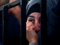 Finkelstein: Gaza Berada di Ambang Kehancuran