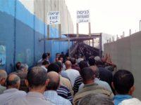 Jelang Libur Yahudi, Israel Tangkap Ratusan Buruh Palestina