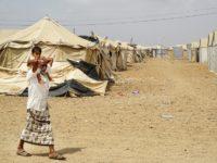 """Hyena, Srigala, dan Penyakit """"Sambut"""" Para Pengungsi Yaman di Djibouti"""