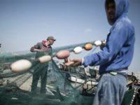 Tentara Israel Tangkap 10 Nelayan Gaza