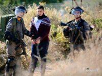 Dalam Dua Bulan, Israel Tahan 1.319 Warga Palestina