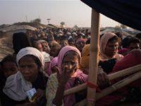 PBB: Kondisi Myanmar Belum Aman Bagi Muslim Rohingya