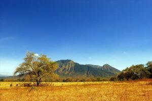 Menikmati Suasana Afrika di Taman Nasional Baluran