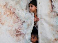 UNICEF: Anak-Anak Gaza Korban Utama Kekerasan Israel