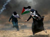 Aksi Protes di Gaza, 109 Warga Palestina Luka-Luka oleh Tentara Israel