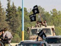 ISIS Berusaha Rebut Perbatasan Irak dari Militer Suriah