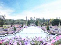 Menikmati Suasana Eropa di Taman Bunga Nusantara