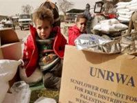UNRWA Janji Tak Akan Tinggalkan Palestina Sendirian
