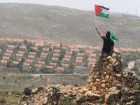 Tahun Ini, Jumlah Pemukiman Yahudi di Palestina Meningkat 187%