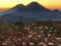 Rekomendasi Traveling Seru: Gunung Prau di Dieng