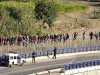 Militer AS Diizinkan Tembaki Imigran Gelap