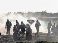 Laporan PBB: 254 Warga Gaza Tewas Sejak Maret 2018