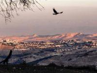 Amnesty: Perusahaan Pariwisata Dukung Penjajahan Palestina