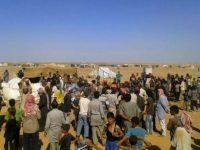 Potret Kamp Rukban, di Suriah.