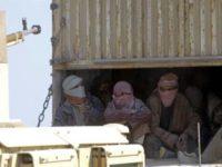 Irak Terima 130 Teroris ISIS Dari Pasukan Kurdi Suriah