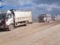 240 Anggota ISIS Dikabarkan Menyerah Kepada SDF