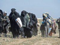 Terkepung Hebat, ISIS Di Suriah Menyerah Secara Massal Kepada SDF