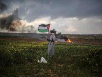 UNHRC Kecam Penggunaan Senjata Mematikan Terhadap Demonstran Palestina