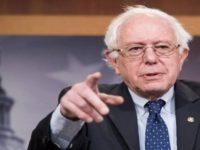 Sanders: Pompeo Bohongi Rakyat AS Soal Perang Yaman