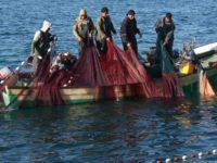 Israel Persempit Ruang Gerak Nelayan Palestina di Gaza