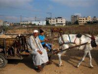 Gaza Jelang Hari Raya Idul Adha