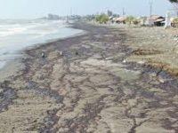 Tumpahan Minyak Pertamina: Tragedi Perusakan Lingkungan