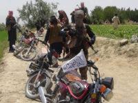 Potret Kelompok Taliban Afghanistan. Sumber: Sputnik