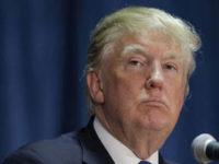 Trump: Biden Sedikit Lebih Baik dari Anjing Gila