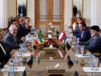 Dikunjungi Menlu Oman, Menlu Iran Nyatakan Menyambut Baik Segala Upaya De-eskalasi